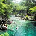 America s 7 best and secret swimming holes lafayette blue springs