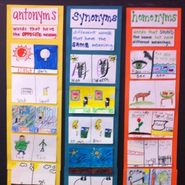 Antonyms Synonyms & Homonyms Chart By Darla Classroom
