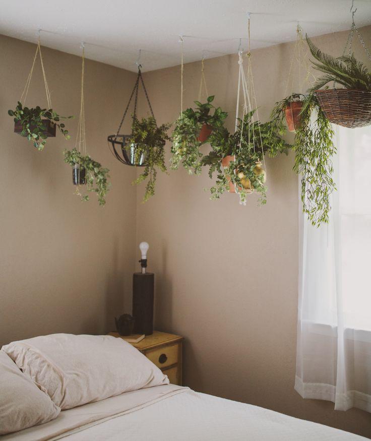 25 Best Ideas About Garden Bedroom On Pinterest Fake Cactus
