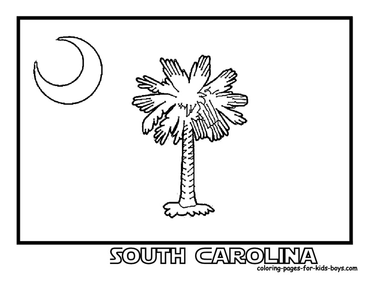 8 best images about South Carolina Unit Study on Pinterest