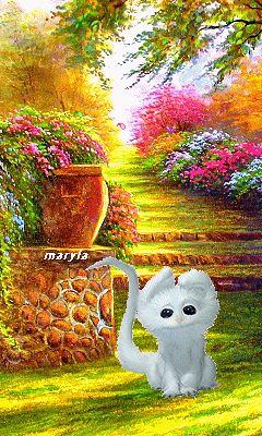 Fall Kitten Wallpaper Ngắm Nh 236 N Ch 250 M 232 O Con Nh 250 N Nhảy Cực K 236 điệu Nghệ V 224 đ 225 Ng