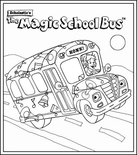 17 Best images about Magic School Bus on Pinterest