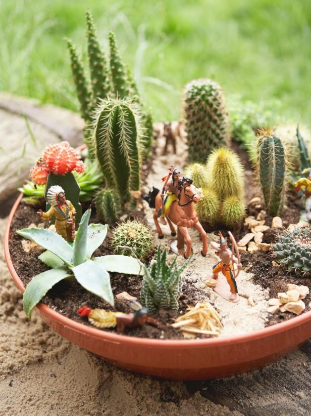 25 Best Ideas About Dish Garden On Pinterest Suculent Plants