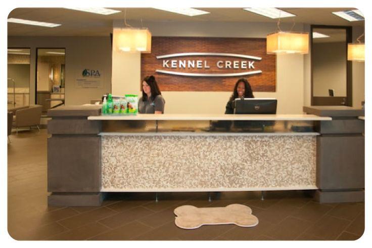 Kennel Creek Pet Resort Dog
