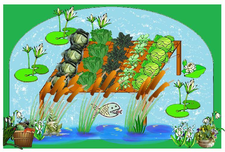 Aztec Floating Garden Perfect Simple Aquaponic Garden