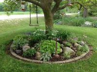 Best 25+ Magnolia trees ideas on Pinterest | Trees to ...
