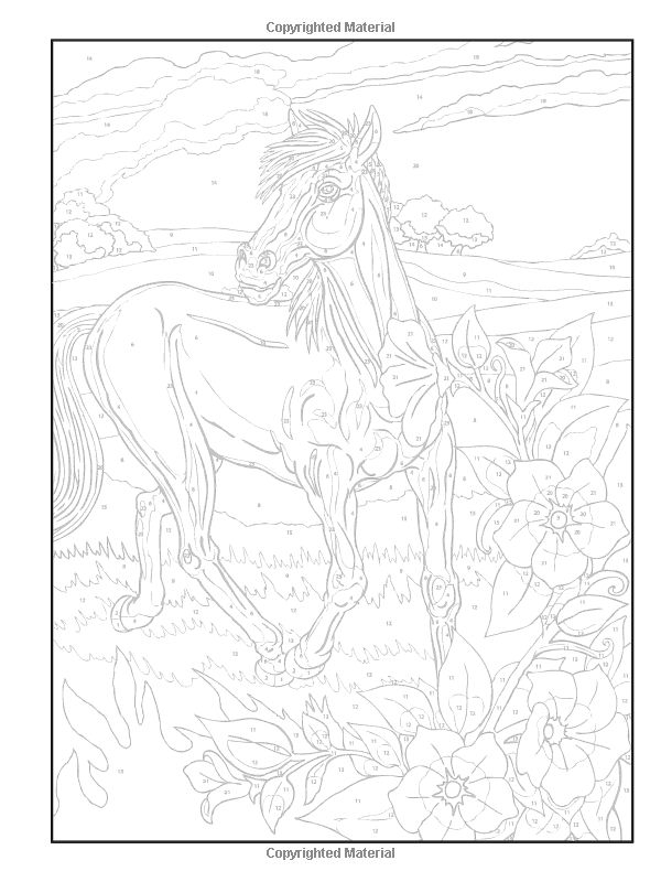 1000+ images about Dover Horse Colouring pages on
