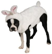 White Rabbit Easter Bunny Dog Pet Halloween Costume Small ...