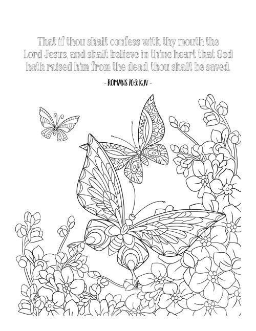 25+ best ideas about Romans bible verse on Pinterest