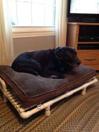 25+ Best Ideas about Raised Dog Beds on Pinterest | Pvc ...
