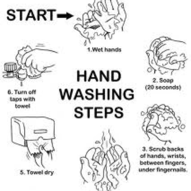 Rinsing your hands is not considered washing your hands