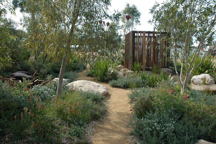 1260 best australian native gardens images on pinterest