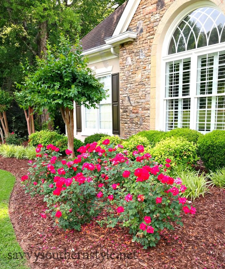 25 Best Ideas About Southern Landscaping On Pinterest