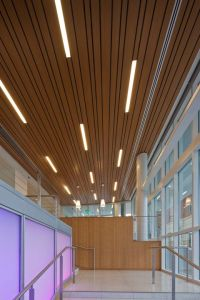 17 Best images about Ceilings on Pinterest | Hunter ...