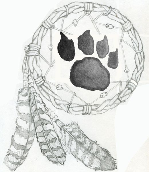 25+ best ideas about Pictures Of Dream Catchers on