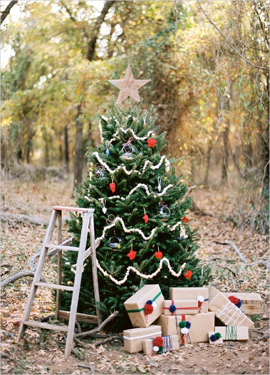 25 Best Ideas About Christmas Mini Sessions On Pinterest