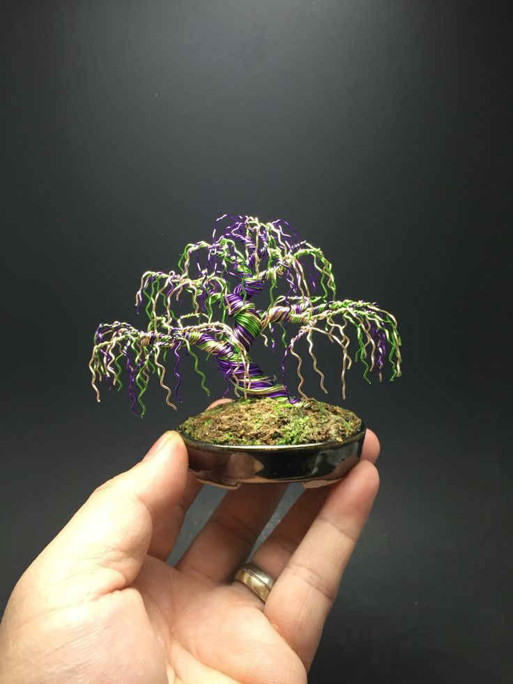 Wiring In Bonsai