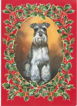 17 Best Images About Dogs Christmas On Pinterest Black