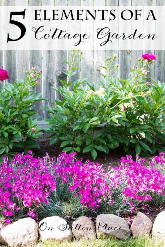 1722 Best Images About Cottage Gardening On Pinterest Flowers