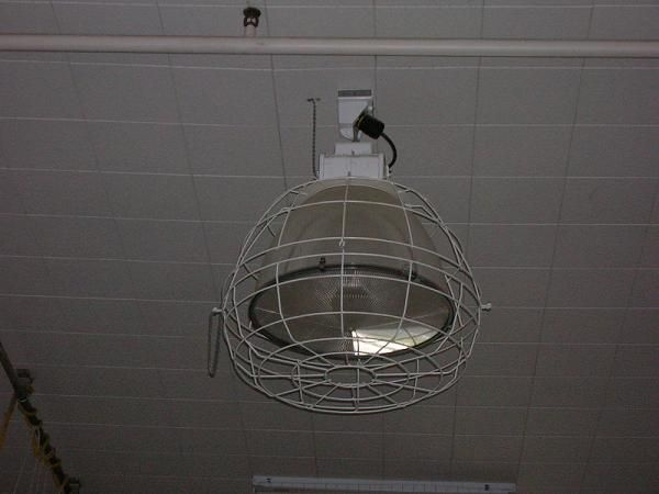 17 Best images about Lighting and Fans/Appliances, etc. on