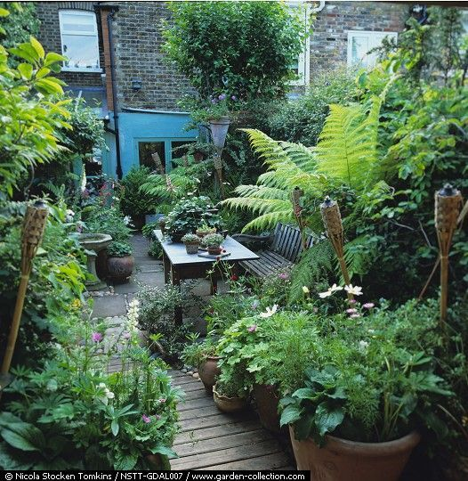 The 25 Best Ideas About Small City Garden On Pinterest Urban