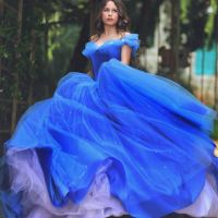 25+ best ideas about Cinderella prom dresses on Pinterest ...