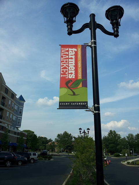 Lamp Post Banner with WindSpilling Brackets  Banners