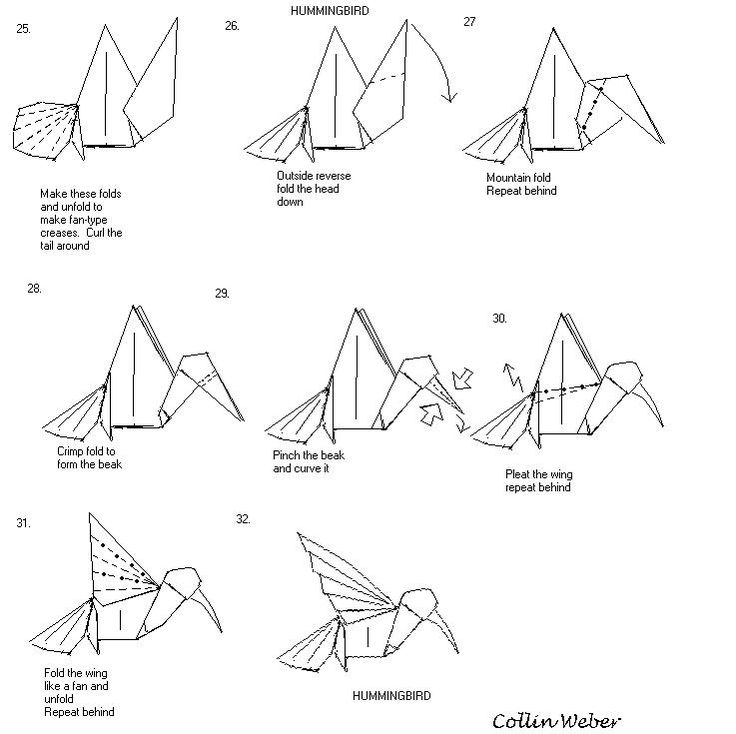 diagram in the book origami flowers pictures to pin on pinterest
