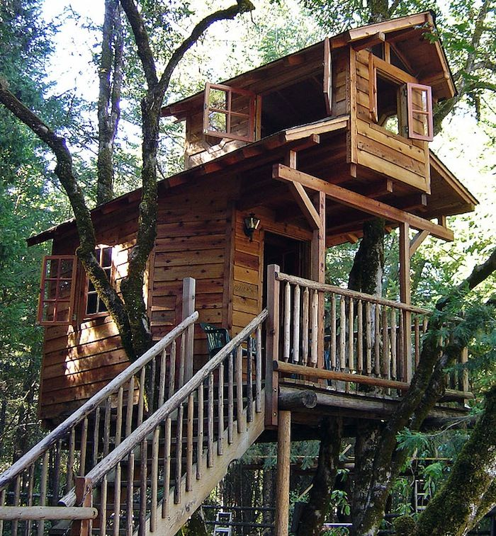 25 Best Ideas About Awesome Tree Houses On Pinterest Tree