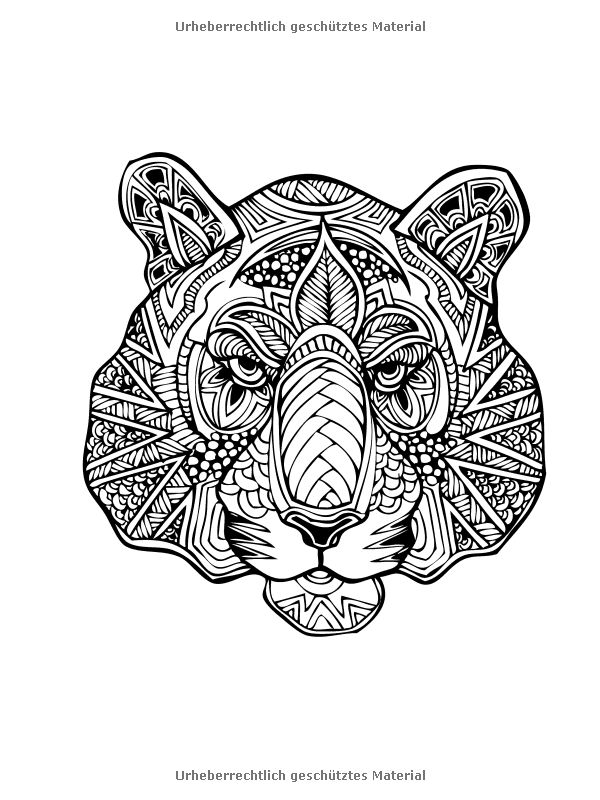 17 Best images about coloriage vie sauvage on Pinterest