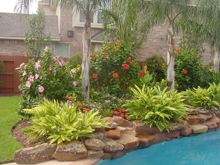 25 Best Ideas About Pool Landscaping On Pinterest Backyard Pool