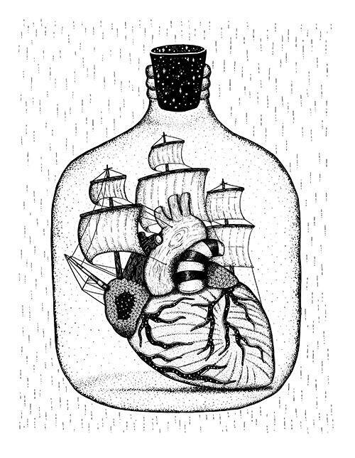 Heart Gross Anatomy