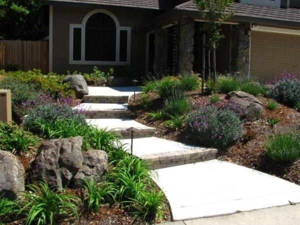 front yard drought tolerant landscape