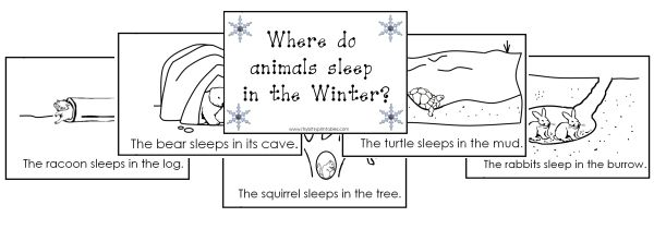 "Search Results for ""Printable Hibernating Animals In"