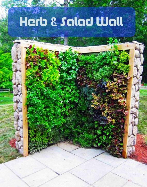 25 Best Ideas About Wall Gardens On Pinterest Vertical Wall