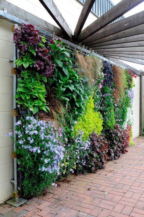 25 Best Ideas About Wall Gardens On Pinterest Vertical Gardens