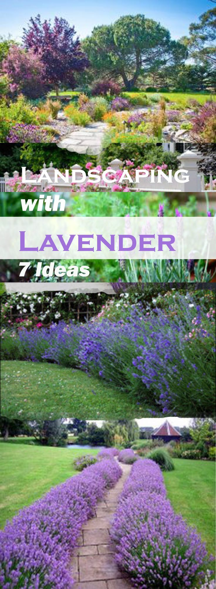 25 Best Ideas About Front Yard Landscaping On Pinterest Yard