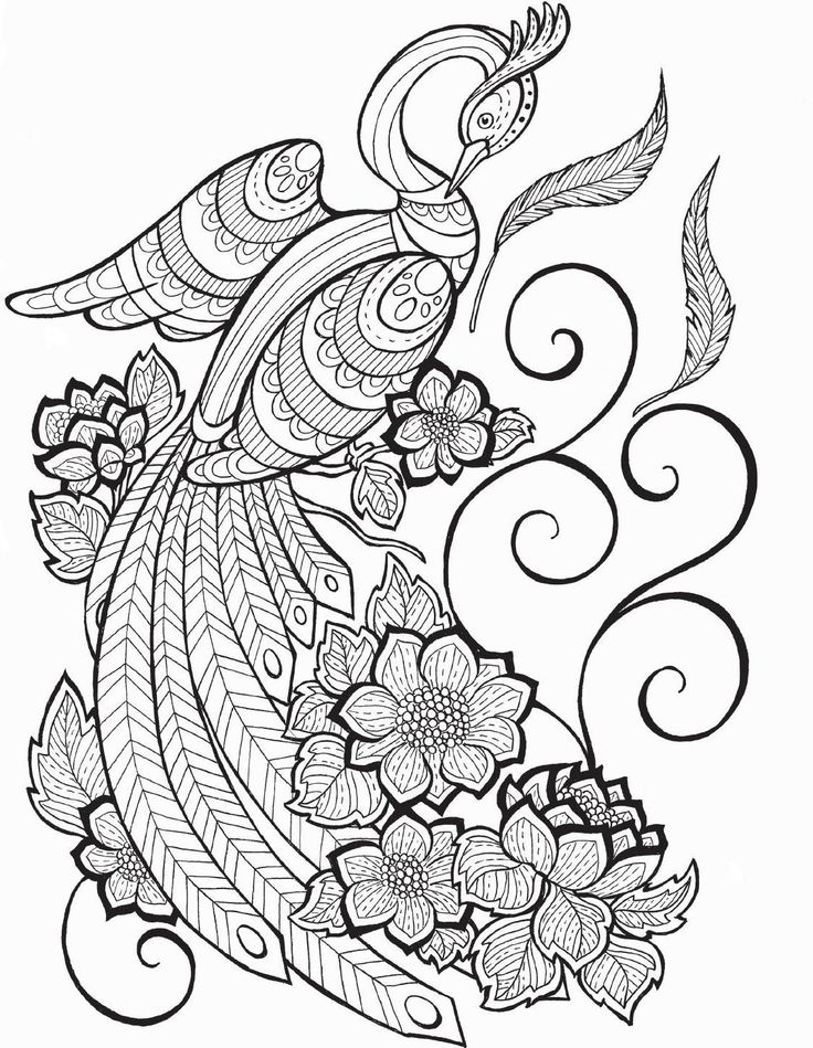 1789 best images about Coloring pages for adults on Pinterest
