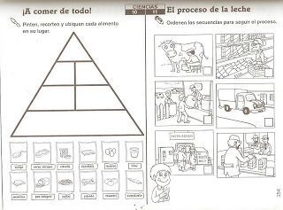 17 Best images about Sociales y naturales on Pinterest
