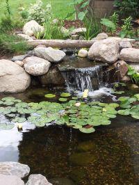 25+ best ideas about Pond Design on Pinterest | Koi fish ...