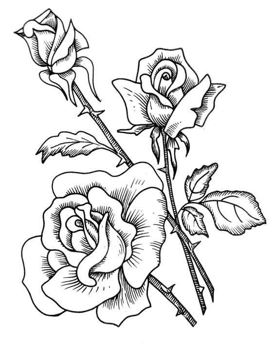 Top 25 Best Floral Embroidery Patterns Ideas