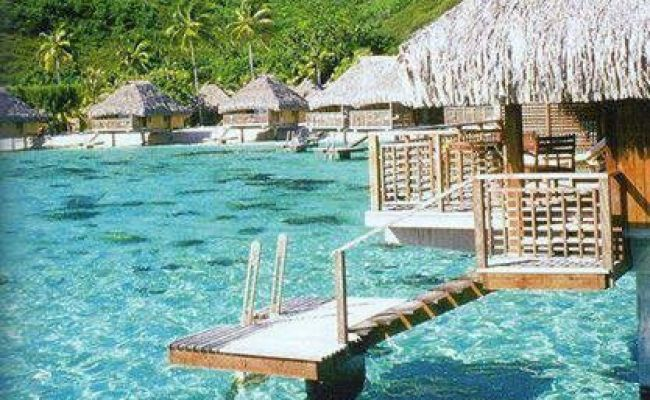 17 Best Images About Just Lovely Bora Bora On Pinterest