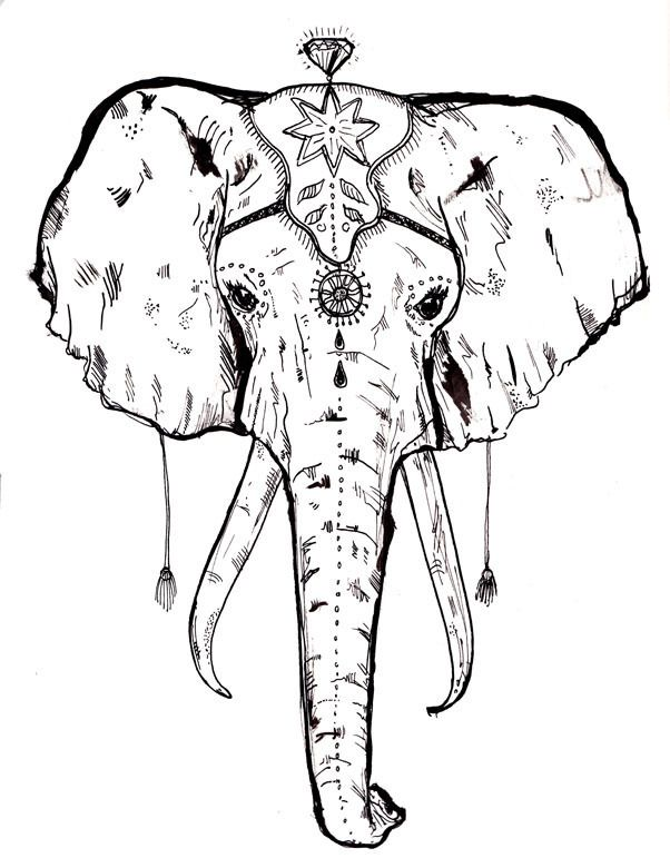 1000 Ideas About Tribal Elephant Drawing