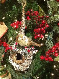 159 best images about Bird Nest Decor on Pinterest   Ana ...