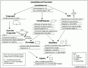 This is a tree map of Quadrilaterals   Thinking Maps