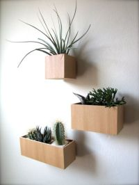 144 best images about Hanging wall planters on Pinterest ...
