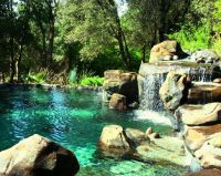 1123 best images about really cool pools on Pinterest ...