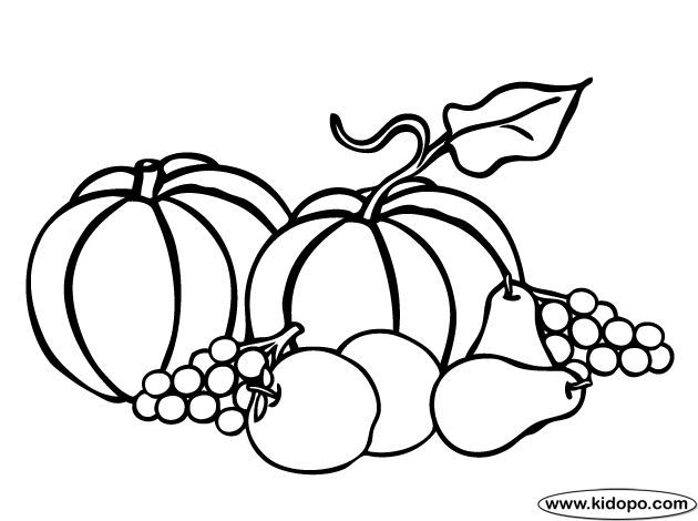 60 best images about Harvest on Pinterest