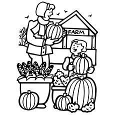 25+ best ideas about Pumpkin Patches on Pinterest