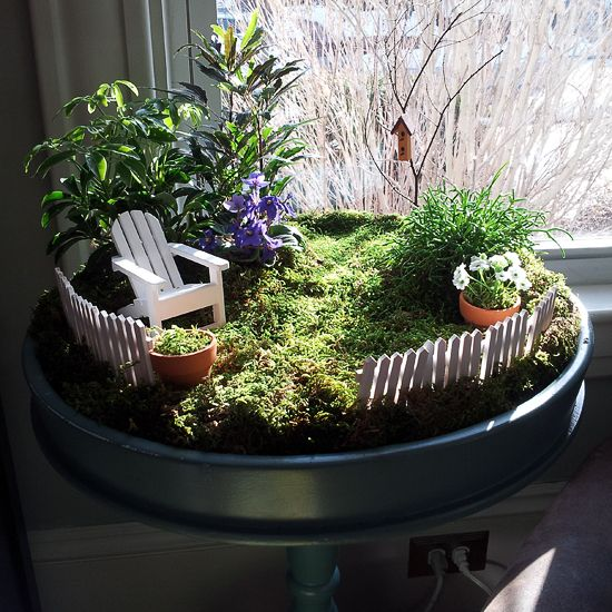 54 Best Images About Fairy Gardens On Pinterest Gardens Indoor
